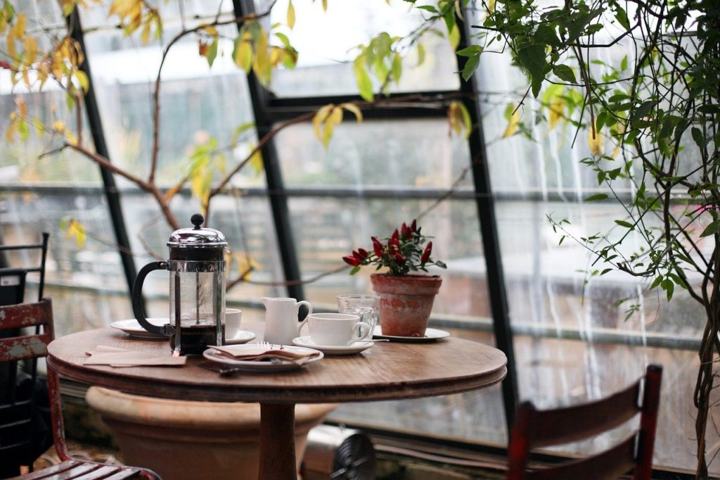 カフェ・植物